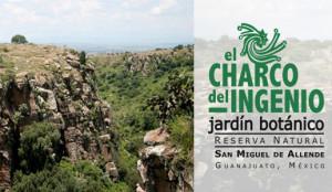 El Charco del Ingenio Botanical Garden