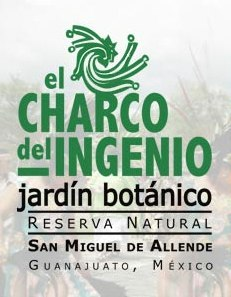 Guided Tours of El Charco del Ingenio Botanical Garden