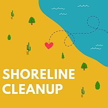 Shoreline-Cleanup