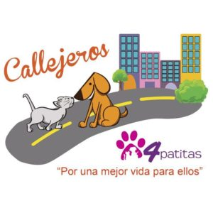 4 Patitas Dog Boarding and Day Care