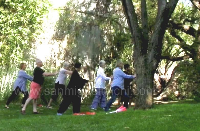 Tai-Chi-in-the-garden