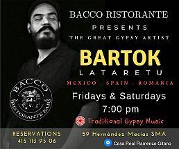 bartok-poster