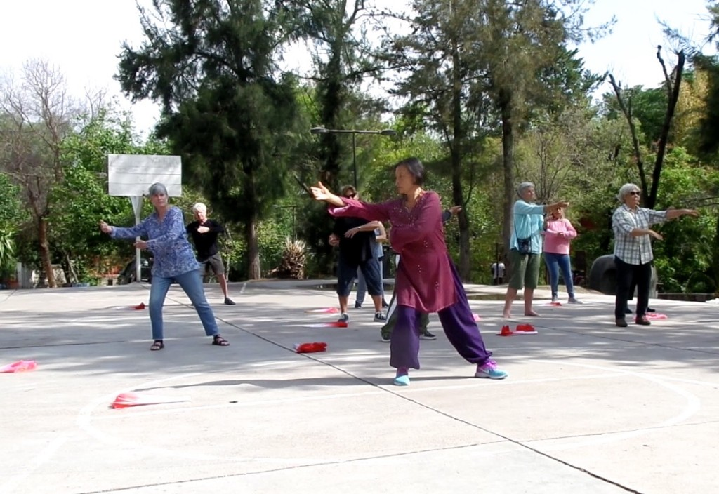 tai-chi-qigong-with-Lydia