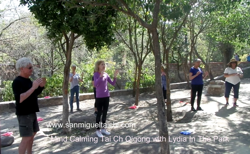 qigong-taichi-with-lydia